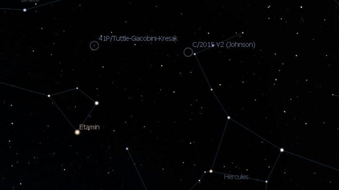 Comet 41P & C/2015 V2 Johnsonn