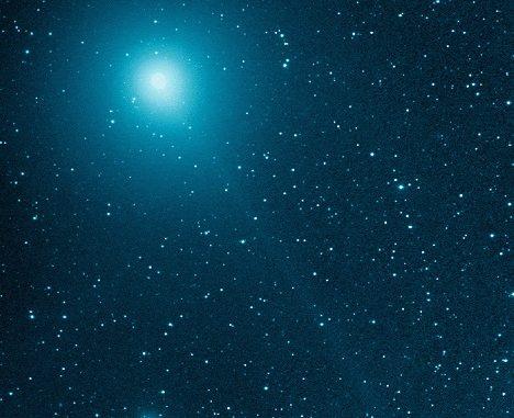 Comet 46P Wiranen - Michael Jager - 01 December