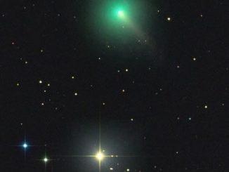 Comet C/2020 F8 Rolando Ligustri